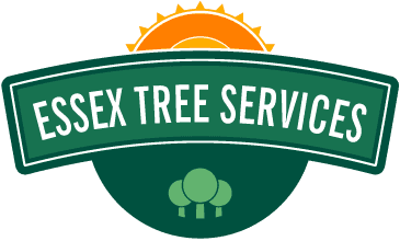 Essex-tree-services